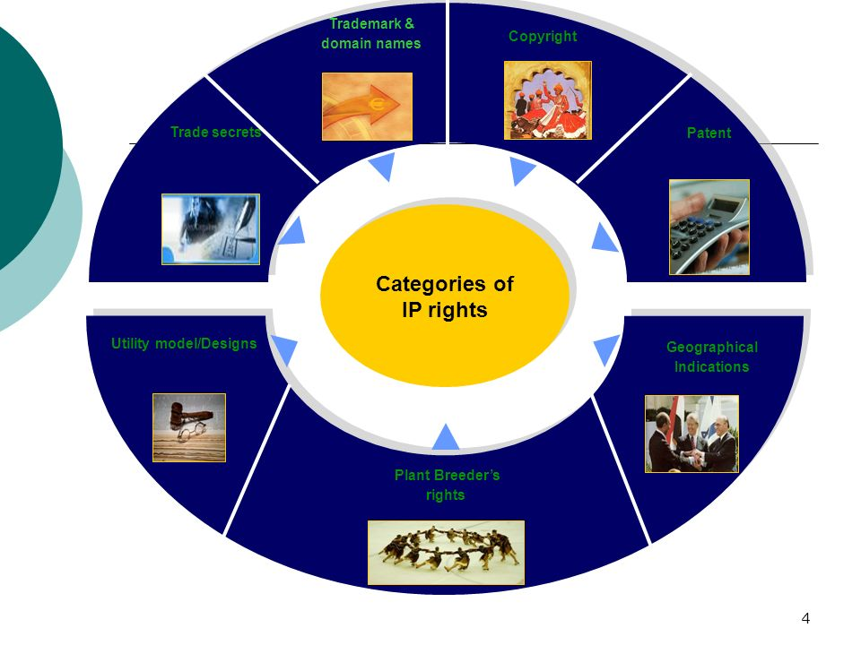 Categories of IP rights