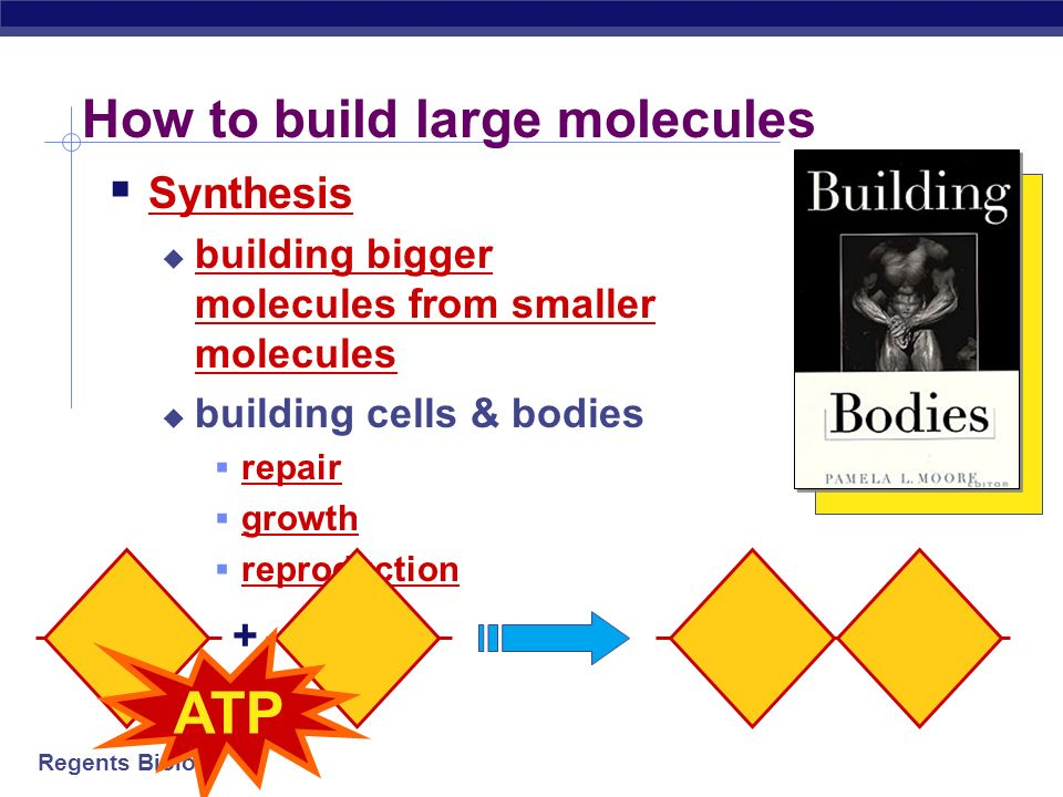 How to build large molecules
