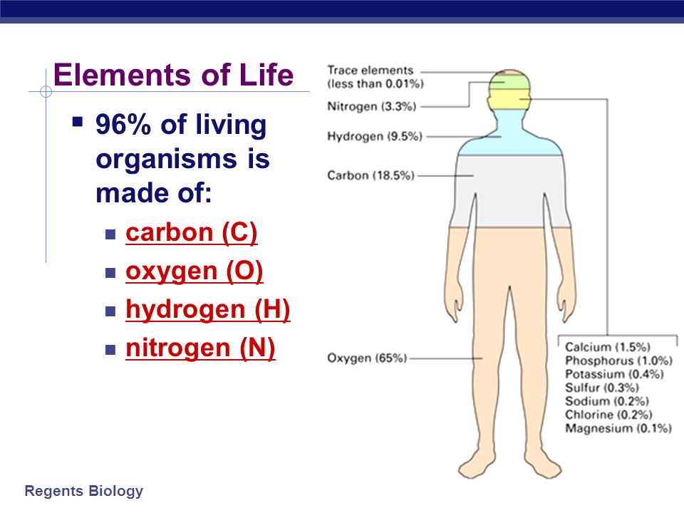 Elements of Life 96% of living organisms is made of: carbon (C)