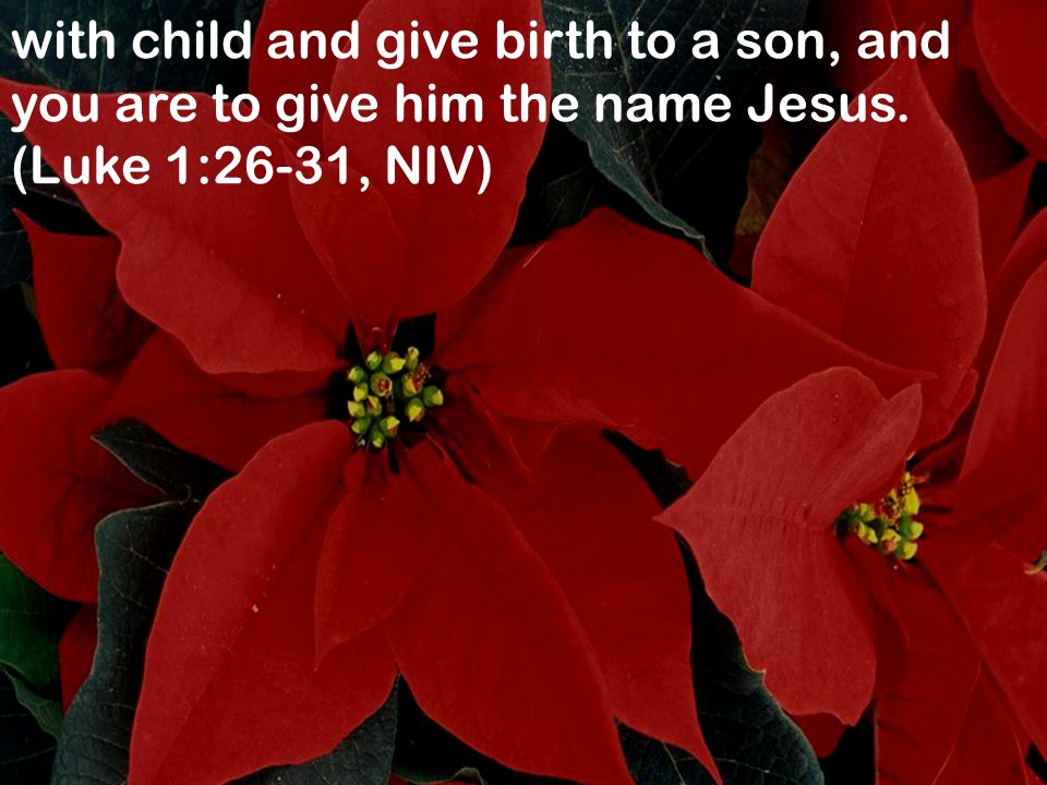with child and give birth to a son, and you are to give him the name Jesus. (Luke 1:26-31, NIV)