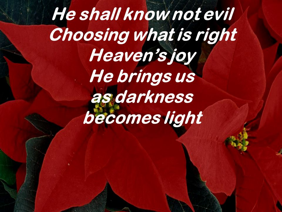 He shall know not evil Choosing what is right Heaven's joy He brings us as darkness becomes light