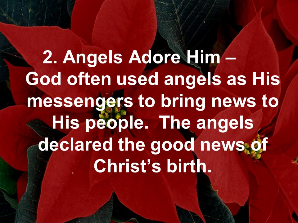 2. Angels Adore Him – God often used angels as His messengers to bring news to His people.