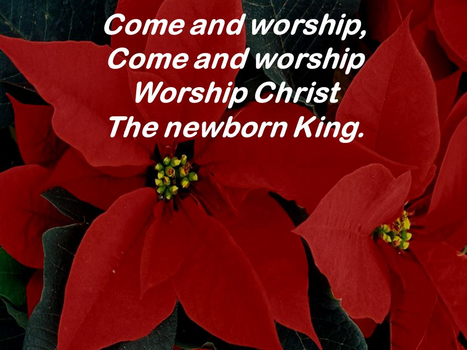 Come and worship, Come and worship Worship Christ