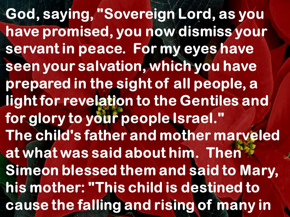 God, saying, Sovereign Lord, as you have promised, you now dismiss your servant in peace. For my eyes have seen your salvation, which you have prepared in the sight of all people, a light for revelation to the Gentiles and for glory to your people Israel.