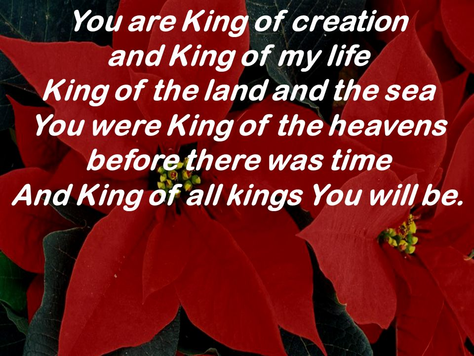 You are King of creation and King of my life