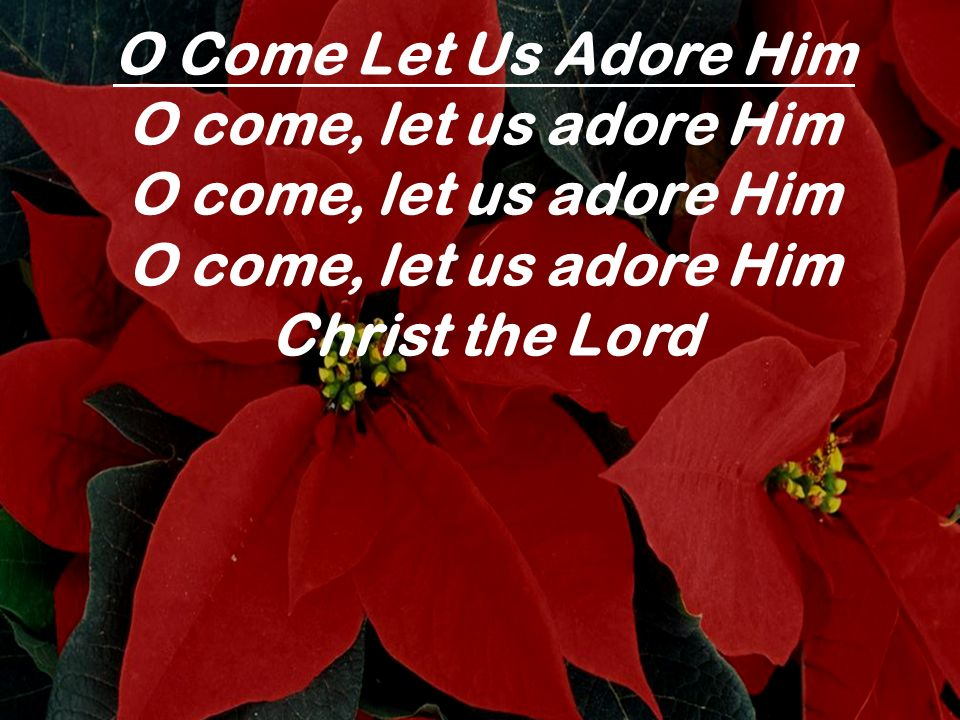 O Come Let Us Adore Him O come, let us adore Him Christ the Lord