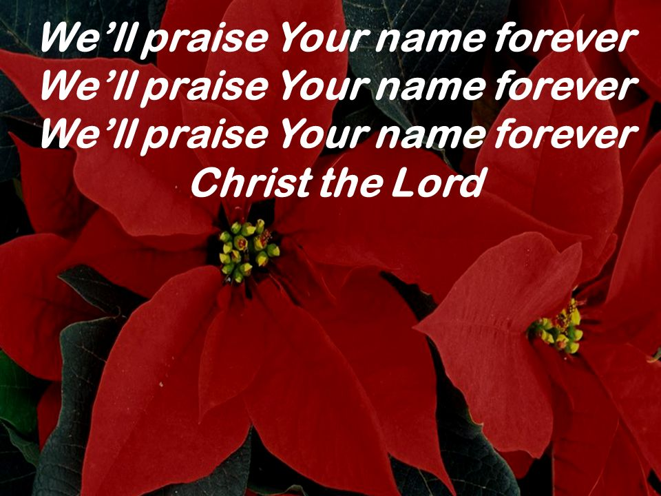 We'll praise Your name forever