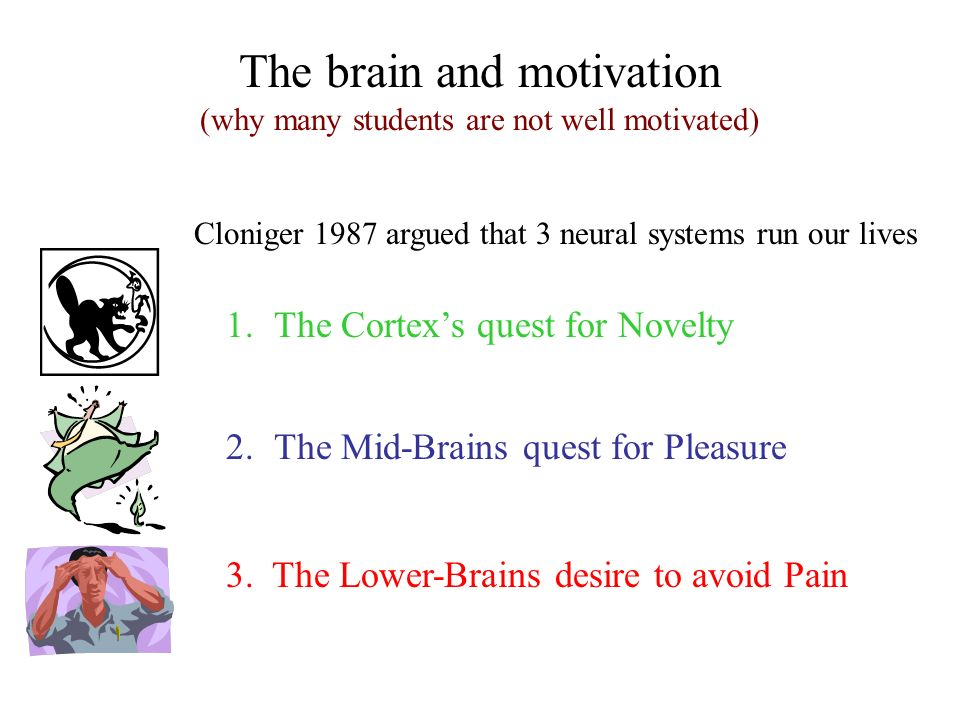The brain and motivation (why many students are not well motivated)