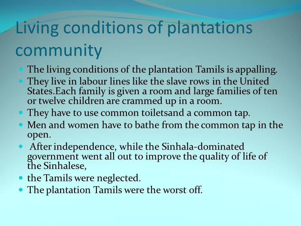 Living conditions of plantations community