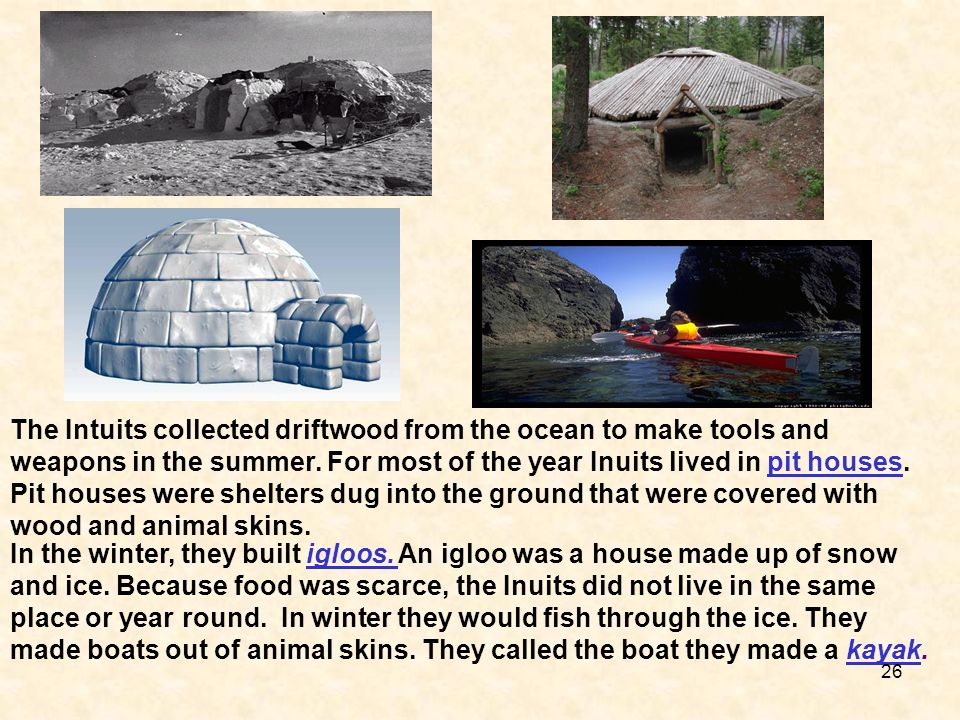 The Intuits collected driftwood from the ocean to make tools and weapons in the summer. For most of the year Inuits lived in pit houses. Pit houses were shelters dug into the ground that were covered with wood and animal skins.