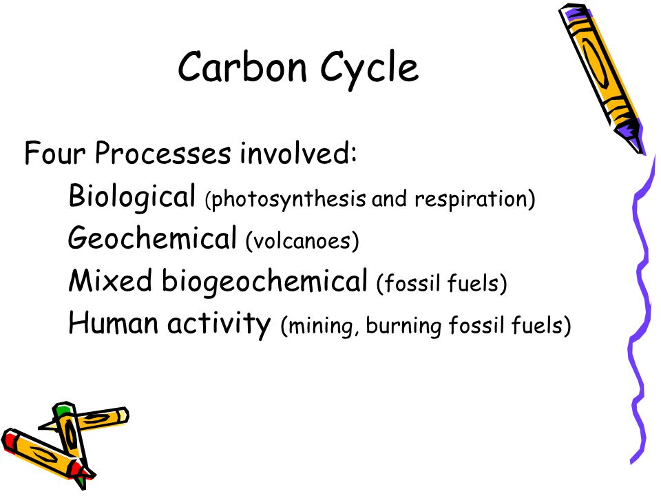 Carbon Cycle Four Processes involved: