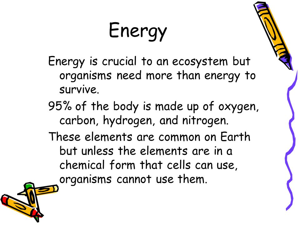 Energy Energy is crucial to an ecosystem but organisms need more than energy to survive.