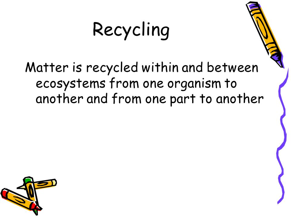 Recycling Matter is recycled within and between ecosystems from one organism to another and from one part to another.