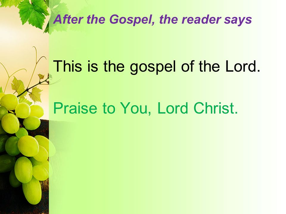 After the Gospel, the reader says