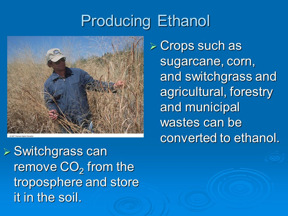 Producing Ethanol Crops such as sugarcane, corn, and switchgrass and agricultural, forestry and municipal wastes can be converted to ethanol.