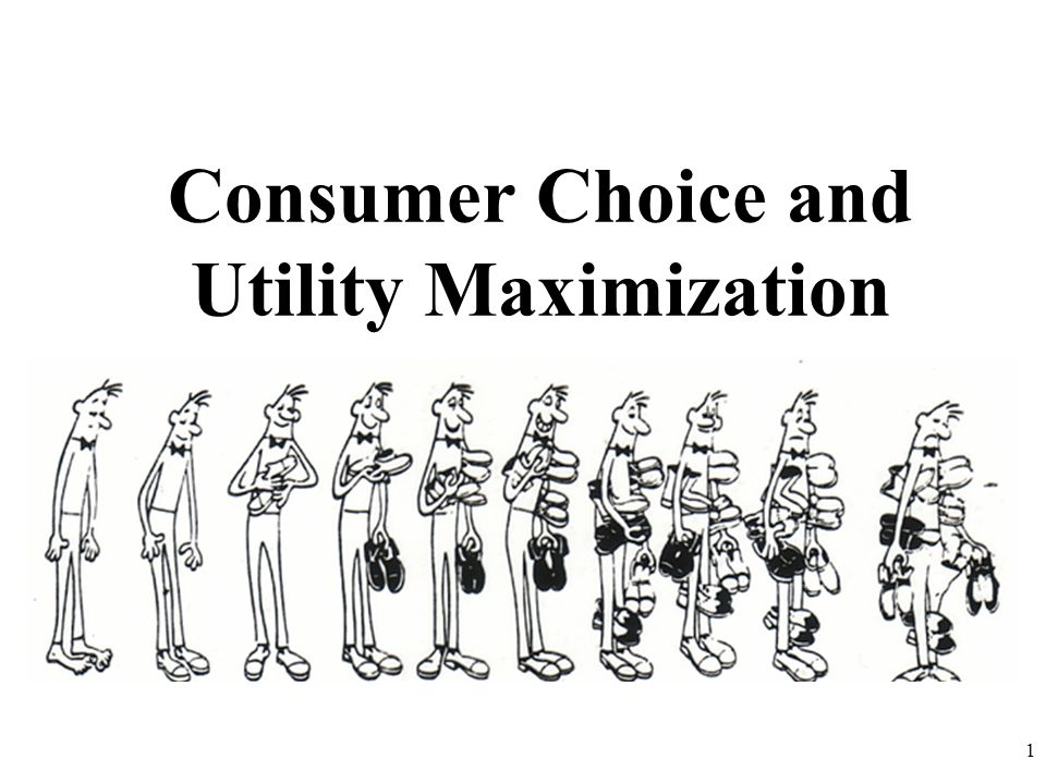 Consumer Choice and Utility Maximization