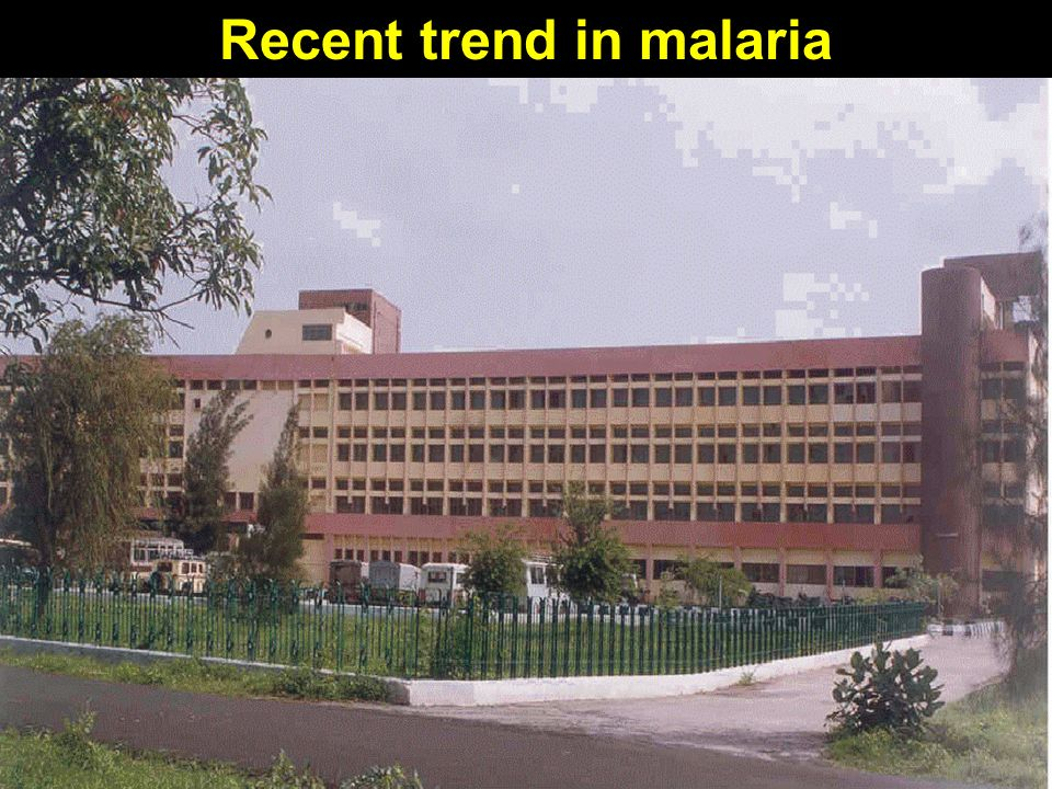 Recent trend in malaria