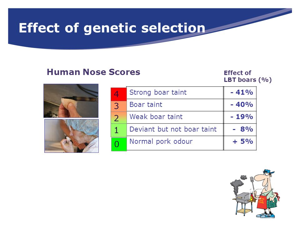 Effect of genetic selection