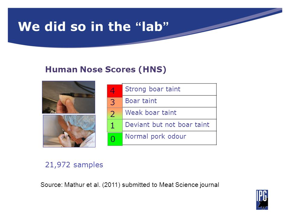 We did so in the lab Human Nose Scores (HNS) 4 3 2 1 21,972 samples