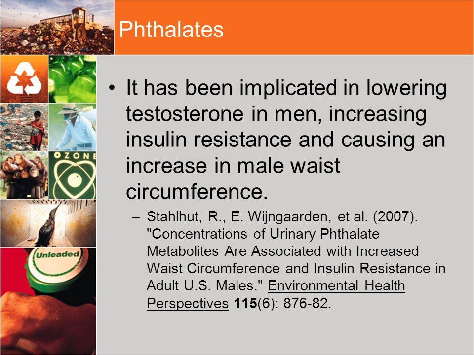PhthalatesIt has been implicated in lowering testosterone in men, increasing insulin resistance and causing an increase in male waist circumference.