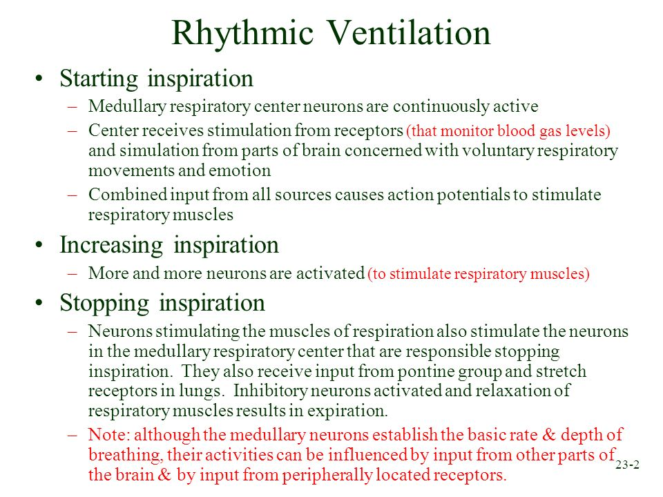 Rhythmic Ventilation Starting inspiration Increasing inspiration