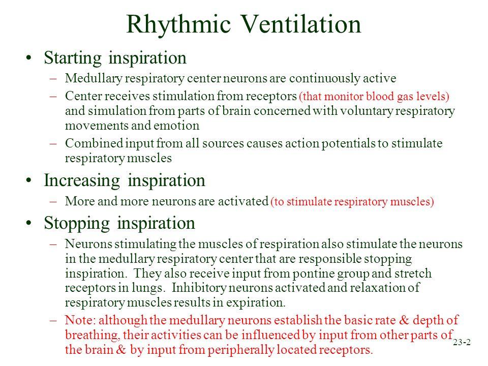 Rhythmic Ventilation Starting inspiration Increasing inspiration