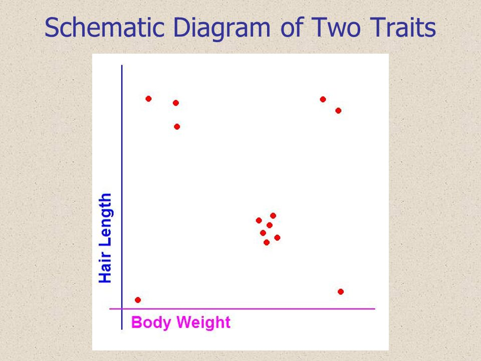Schematic Diagram of Two Traits