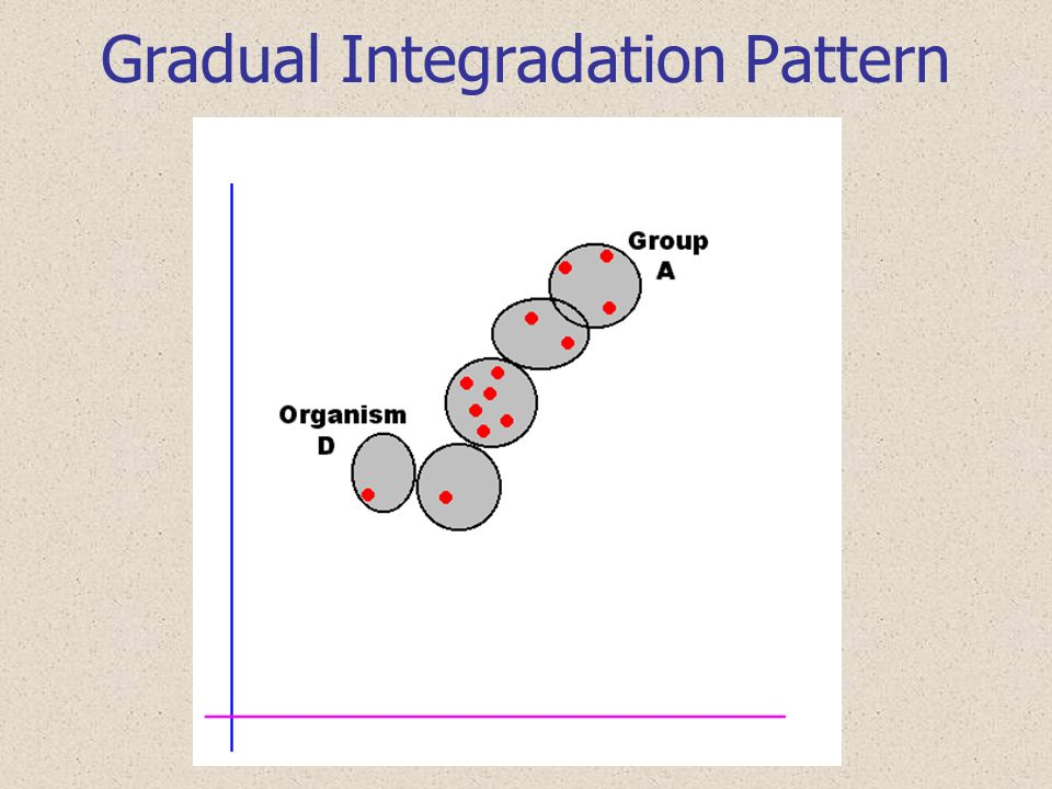 Gradual Integradation Pattern