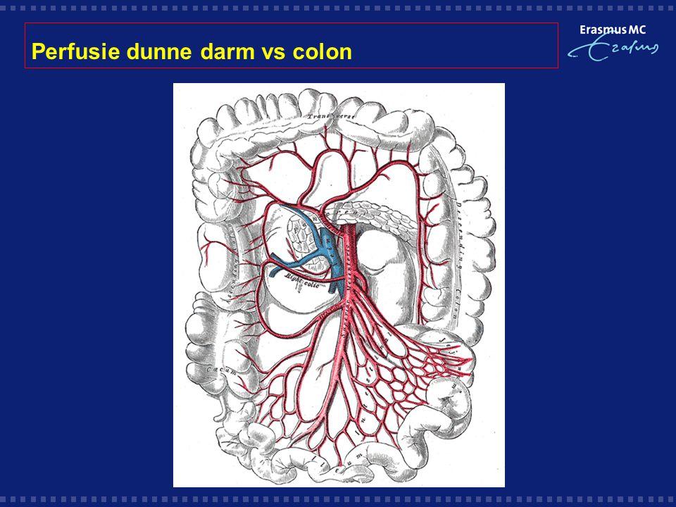 Perfusie dunne darm vs colon