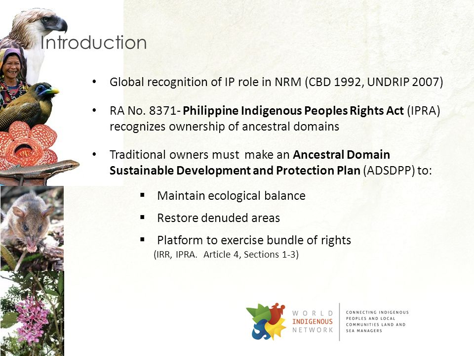 Introduction Global recognition of IP role in NRM (CBD 1992, UNDRIP 2007)