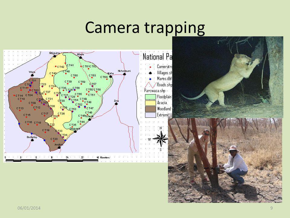 Camera trapping 25/03/2017