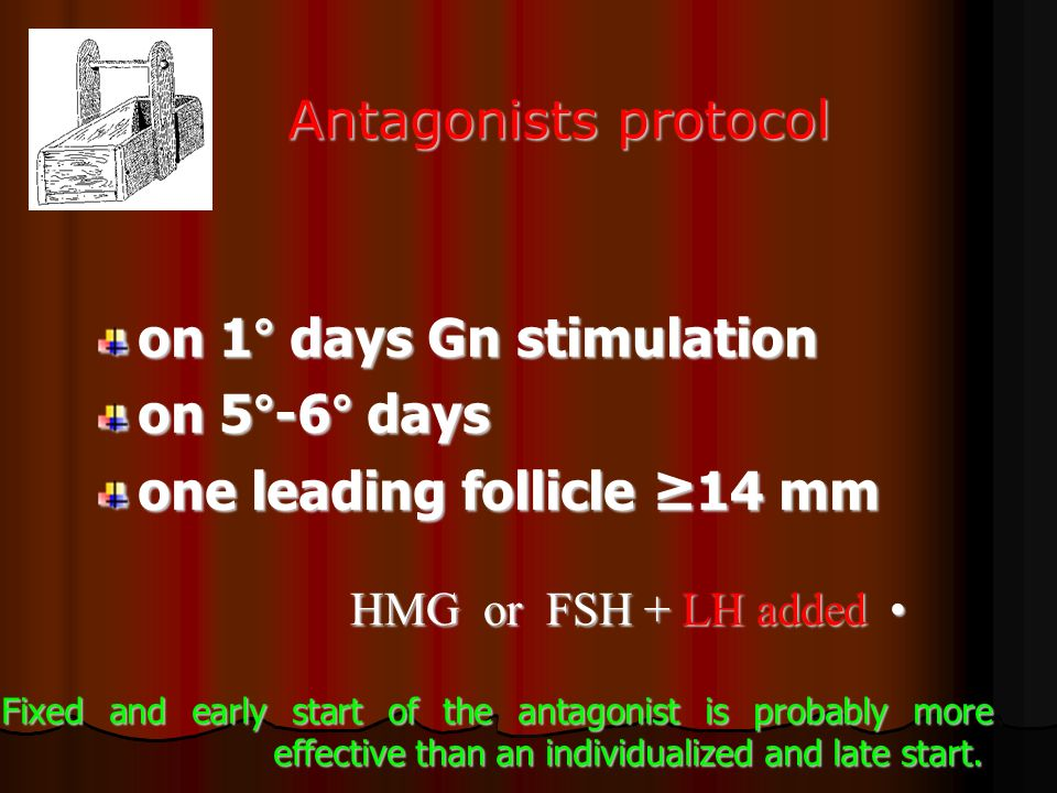 on 1° days Gn stimulation on 5°-6° days one leading follicle ≥14 mm