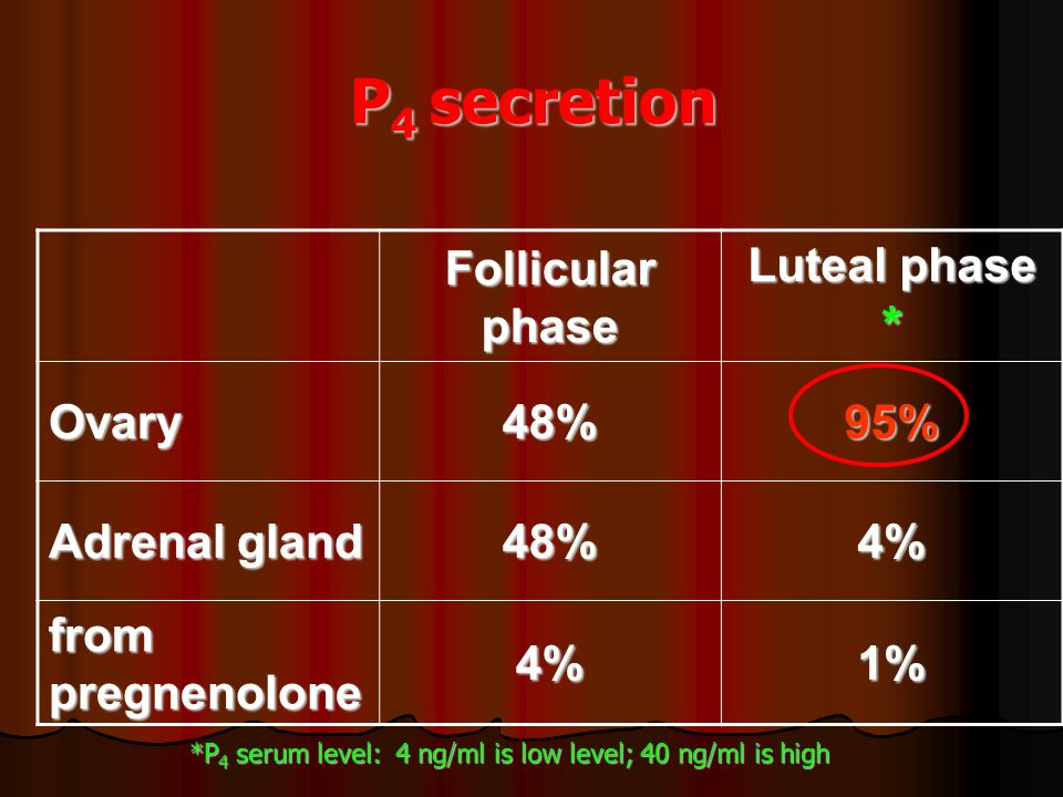 P4 secretion Follicular phase Luteal phase * Ovary 48% 95%