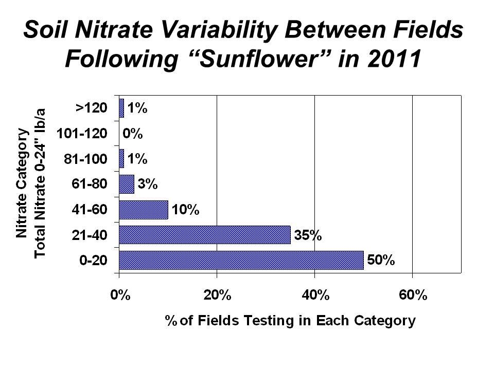 Soil Nitrate Variability Between Fields Following Sunflower in 2011
