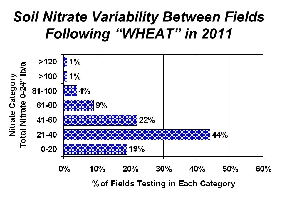 Soil Nitrate Variability Between Fields Following WHEAT in 2011