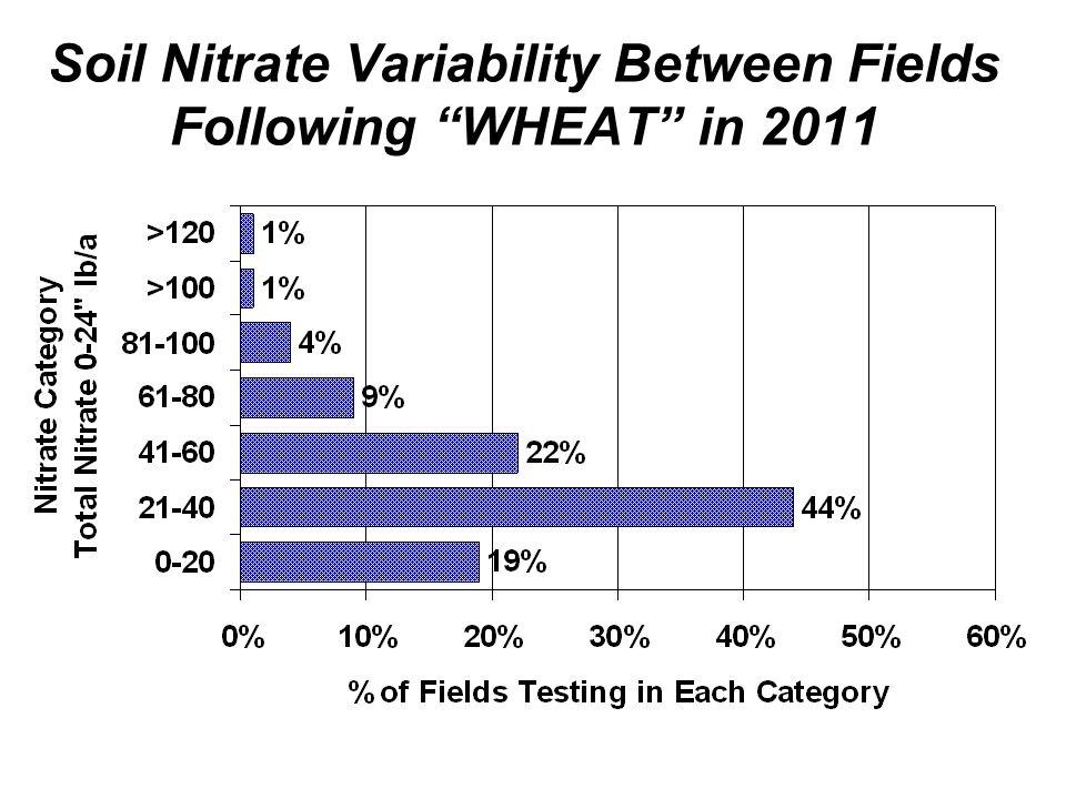 Soil Nitrate Variability Between Fields Following WHEAT in 2011