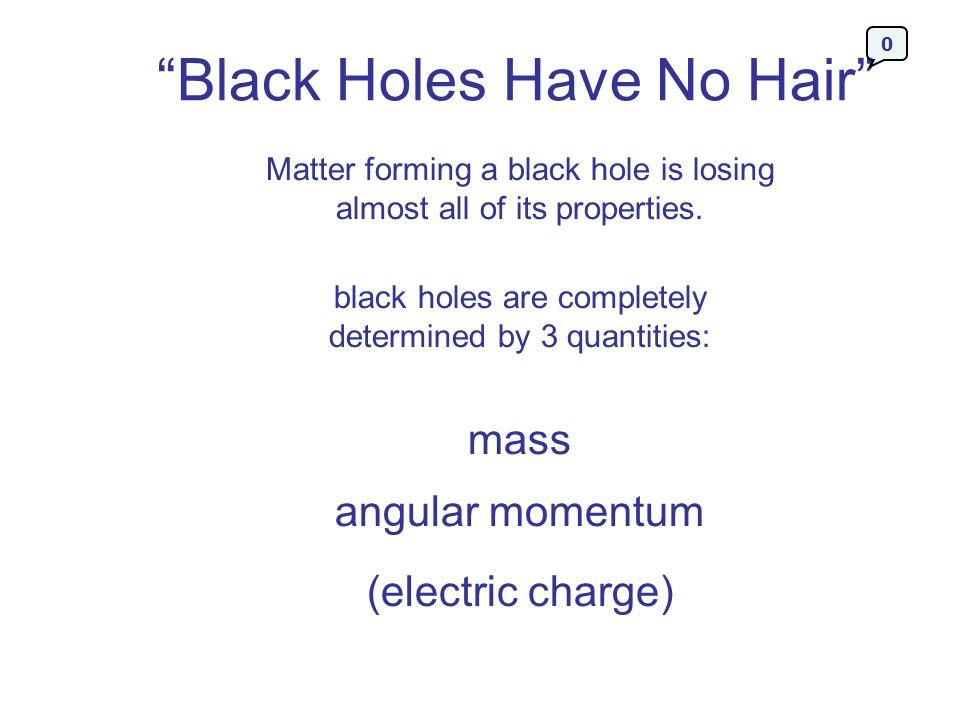 Black Holes Have No Hair