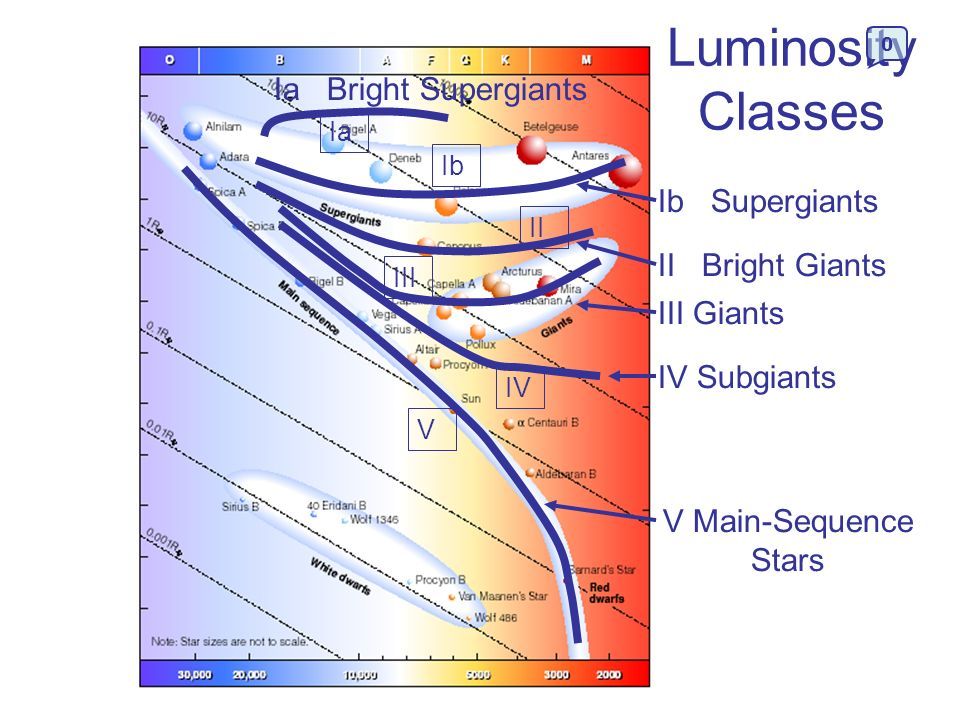 Luminosity Classes Ia Bright Supergiants Ib Supergiants
