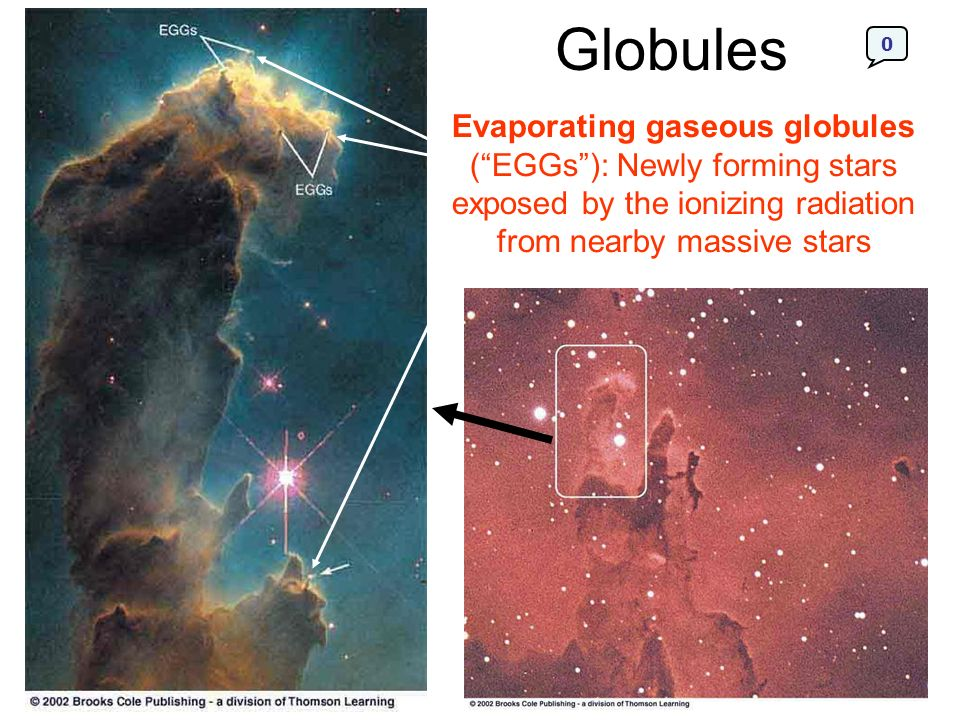 Globules Evaporating gaseous globules ( EGGs ): Newly forming stars exposed by the ionizing radiation from nearby massive stars.