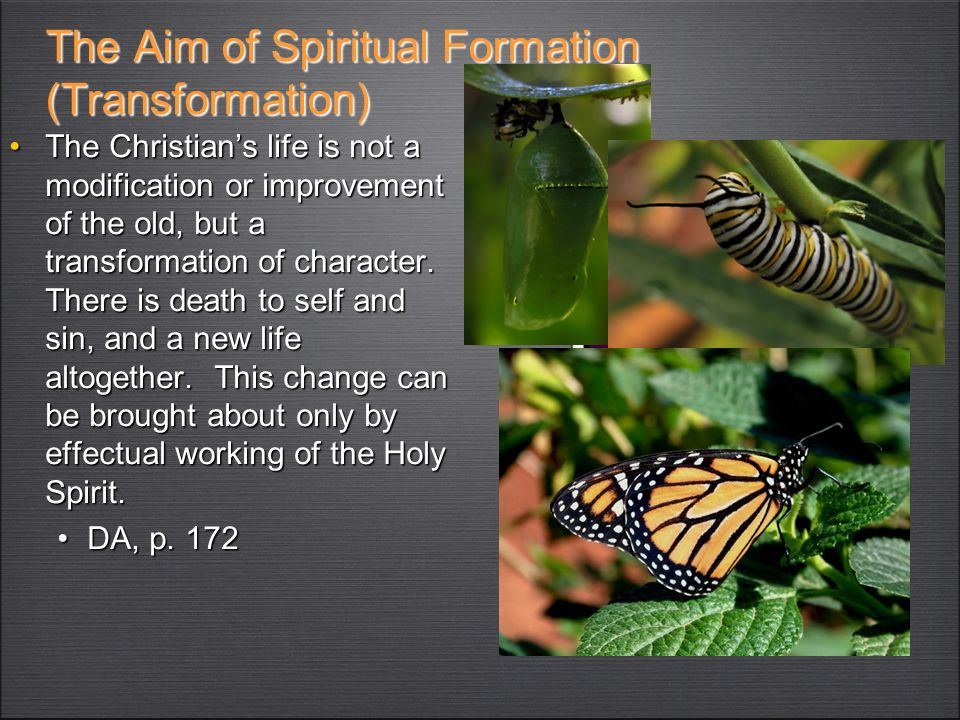 The Aim of Spiritual Formation (Transformation)