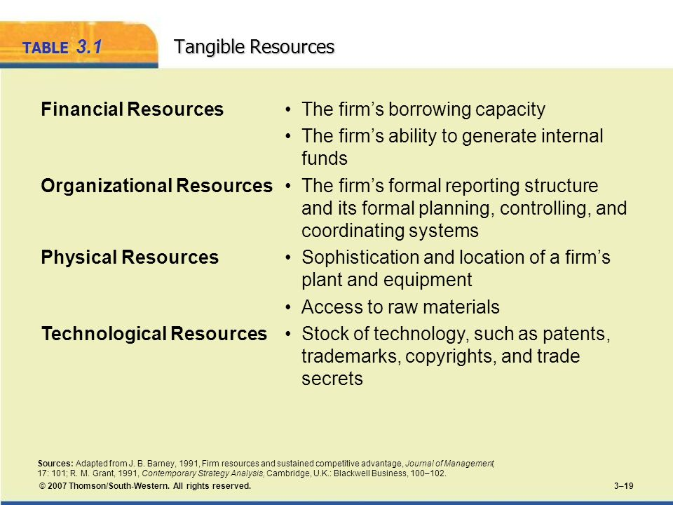 TABLE 3.1 Tangible Resources