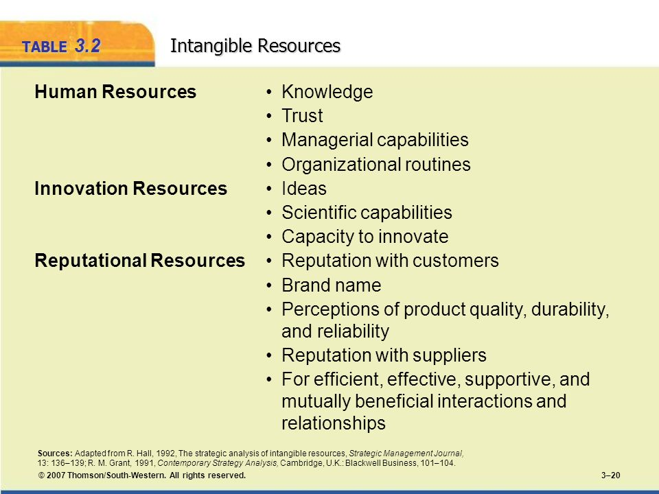 TABLE 3.2 Intangible Resources