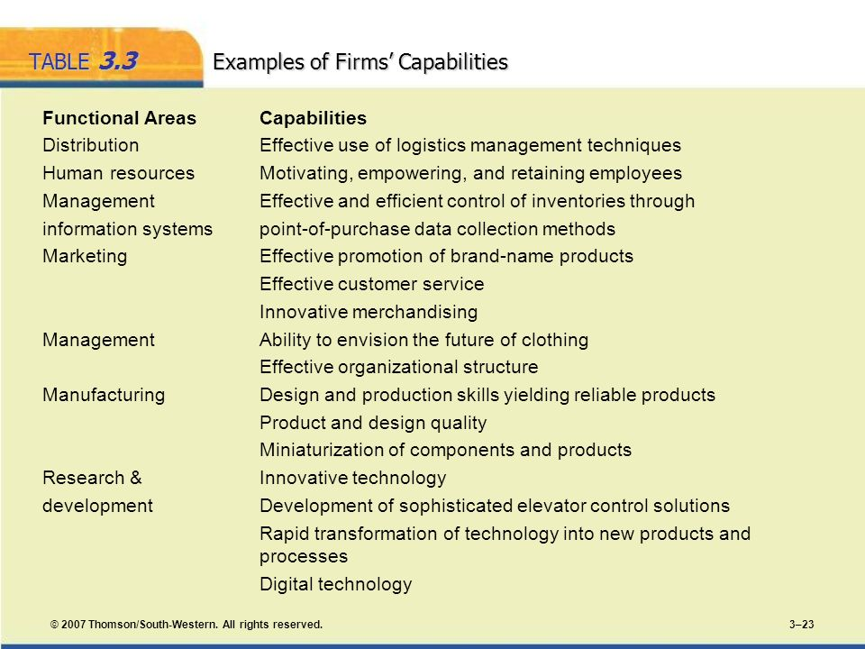 TABLE 3.3 Examples of Firms' Capabilities