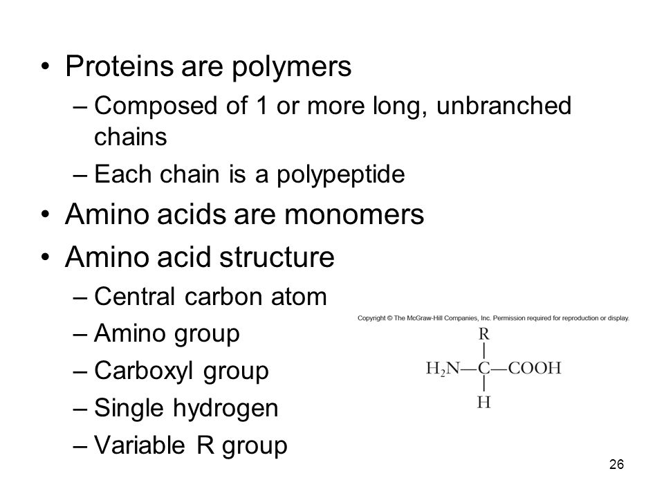 Amino acids are monomers Amino acid structure