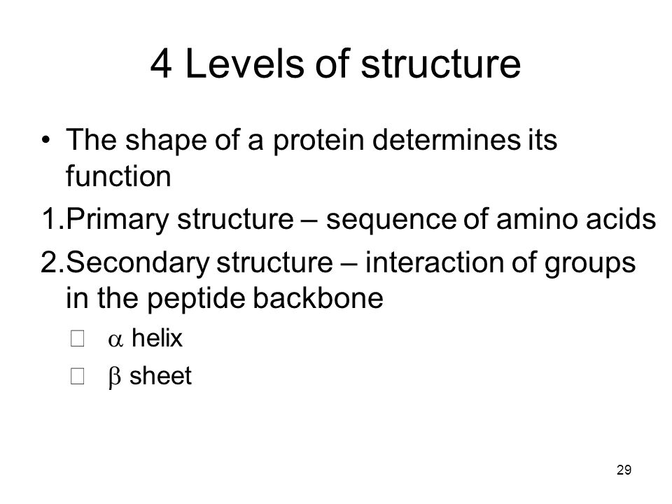 4 Levels of structure The shape of a protein determines its function