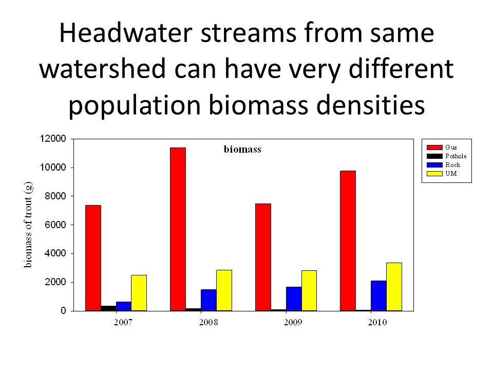 Headwater streams from same watershed can have very different population biomass densities