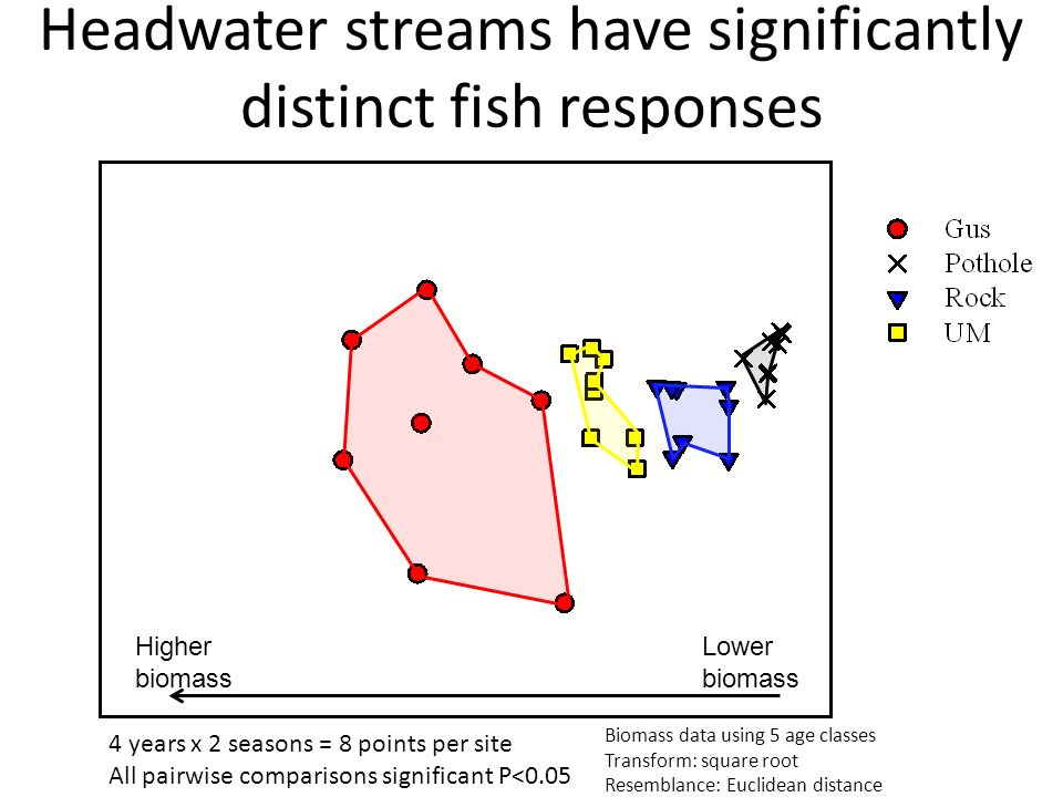 Headwater streams have significantly distinct fish responses