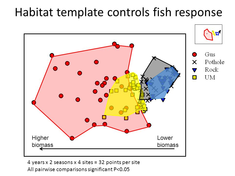 Habitat template controls fish response