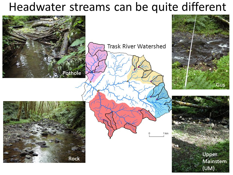 Headwater streams can be quite different