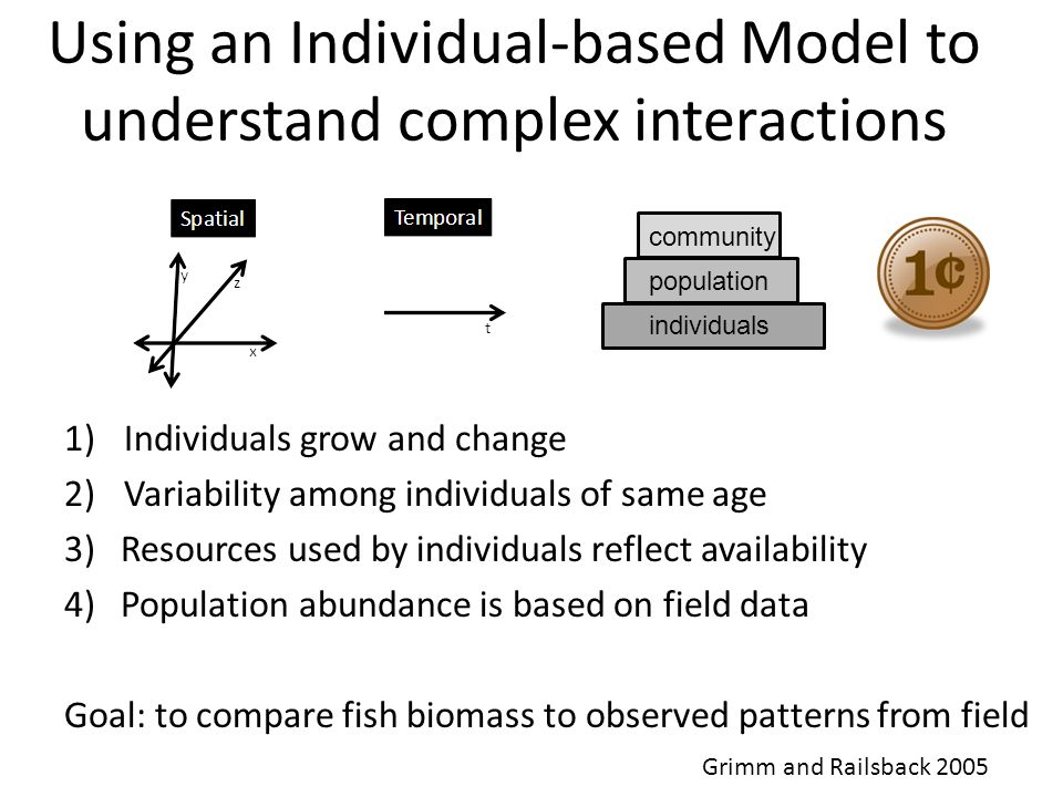 Using an Individual-based Model to understand complex interactions